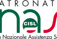 logo inas